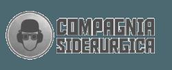 Compagniasiderurgica - ICOM SRL